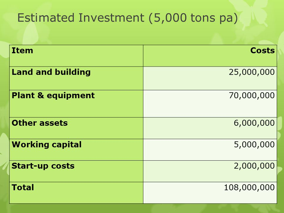 Estimated Investment (5,000 tons pa)
