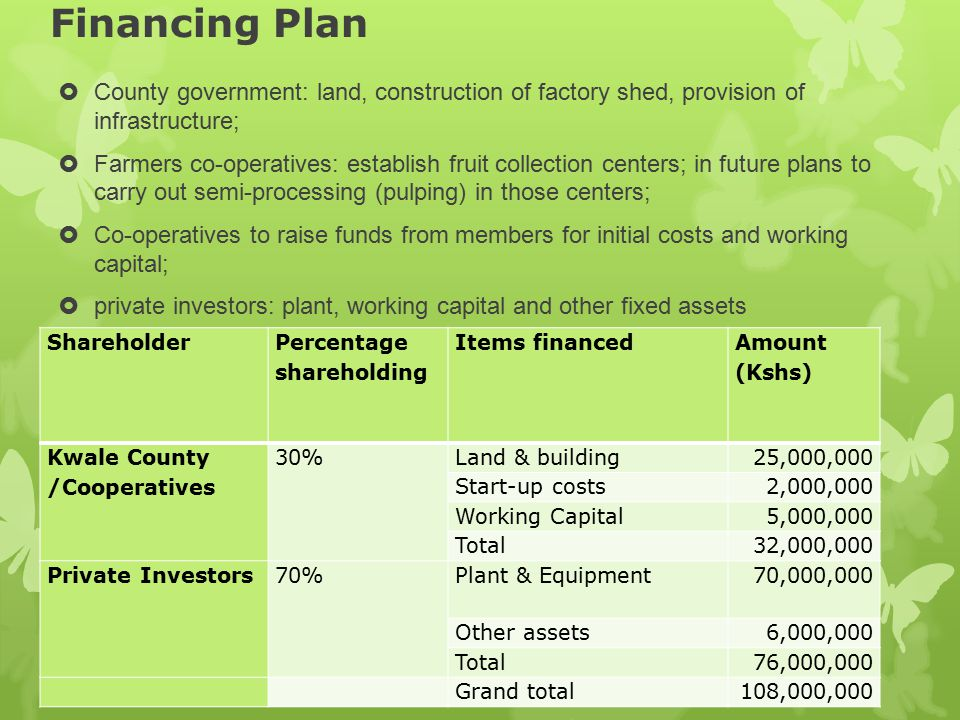 Financing Plan County government: land, construction of factory shed, provision of infrastructure;