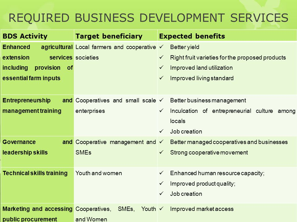 REQUIRED BUSINESS DEVELOPMENT SERVICES
