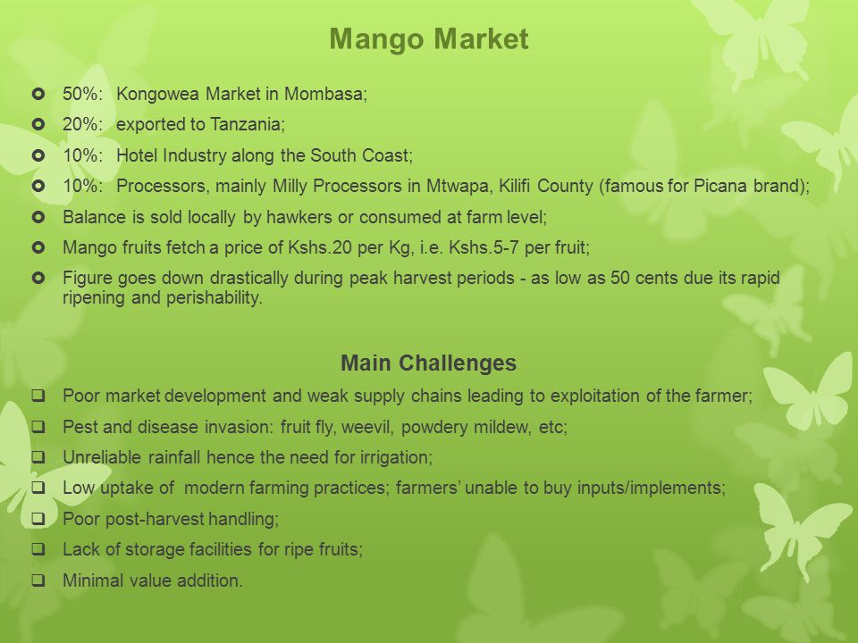Mango Market Main Challenges 50%: Kongowea Market in Mombasa;