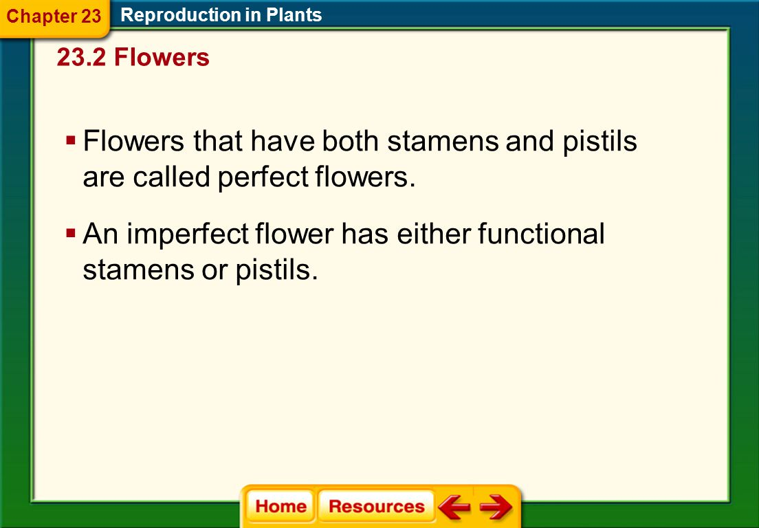 Flowers that have both stamens and pistils are called perfect flowers.