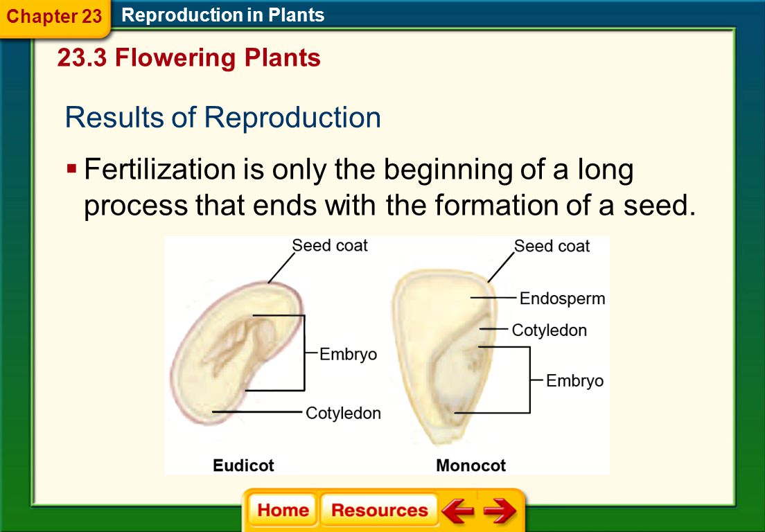 Results of Reproduction