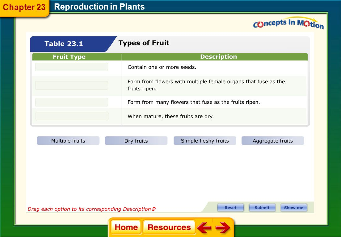 Chapter 23 Reproduction in Plants