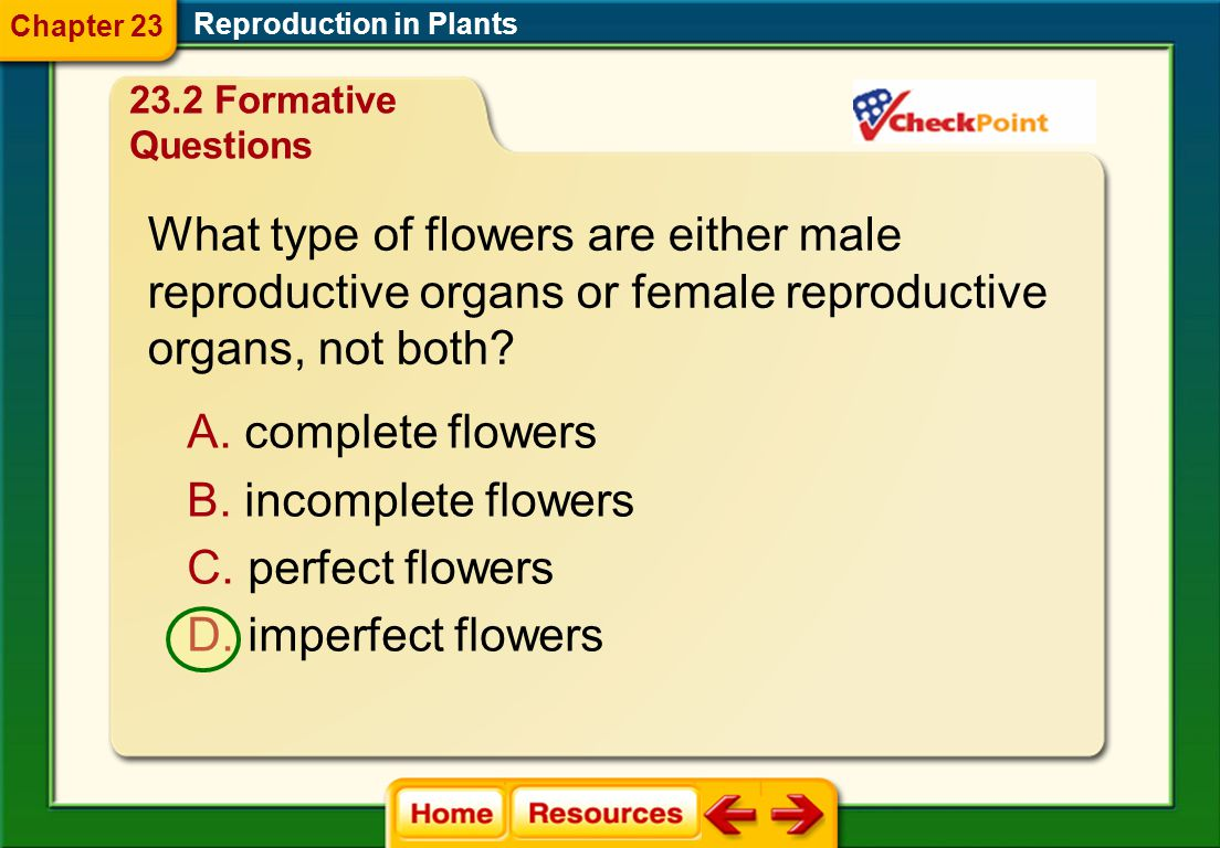 What type of flowers are either male