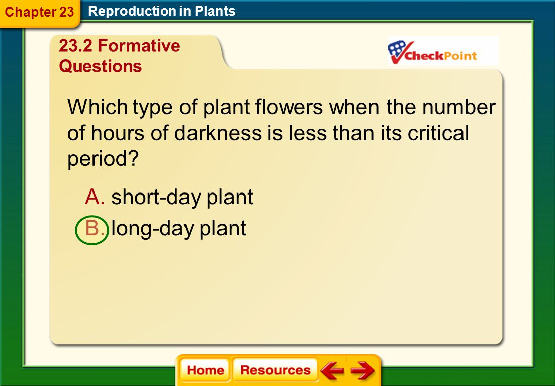 Which type of plant flowers when the number