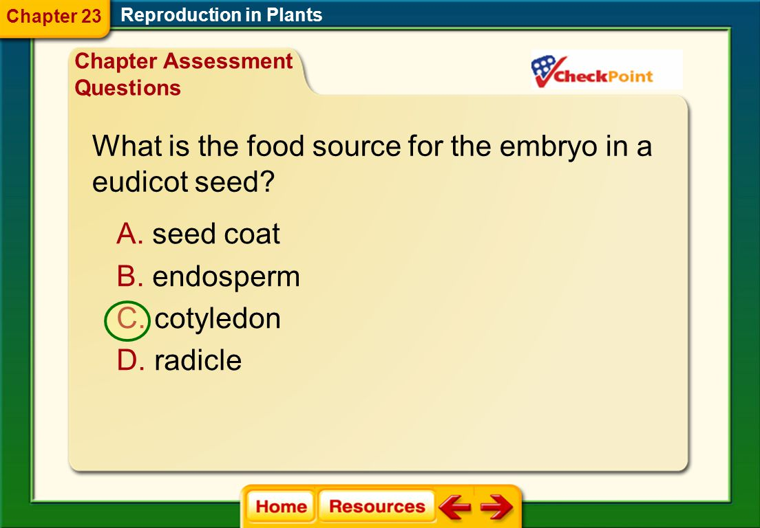 What is the food source for the embryo in a eudicot seed