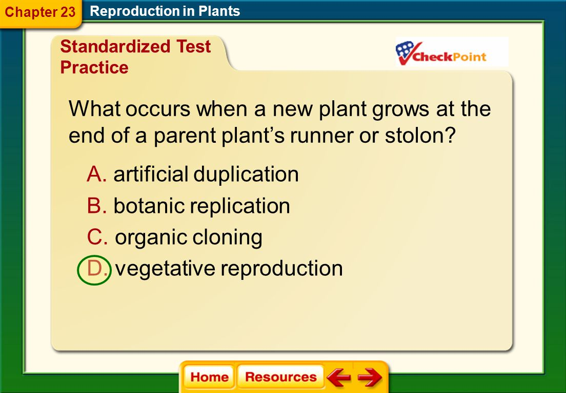 What occurs when a new plant grows at the