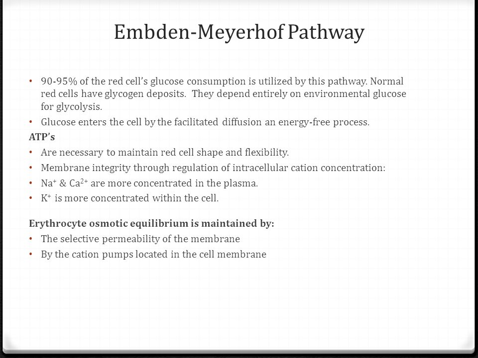 Embden-Meyerhof Pathway