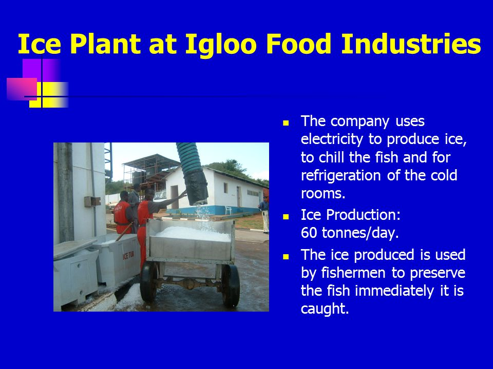 Ice Plant at Igloo Food Industries
