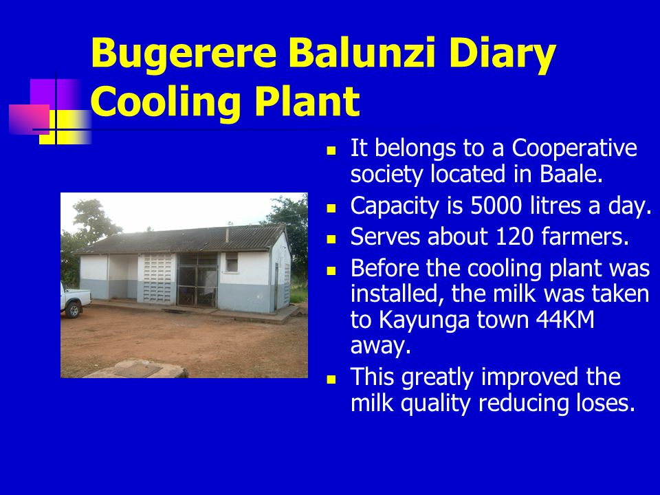 Bugerere Balunzi Diary Cooling Plant