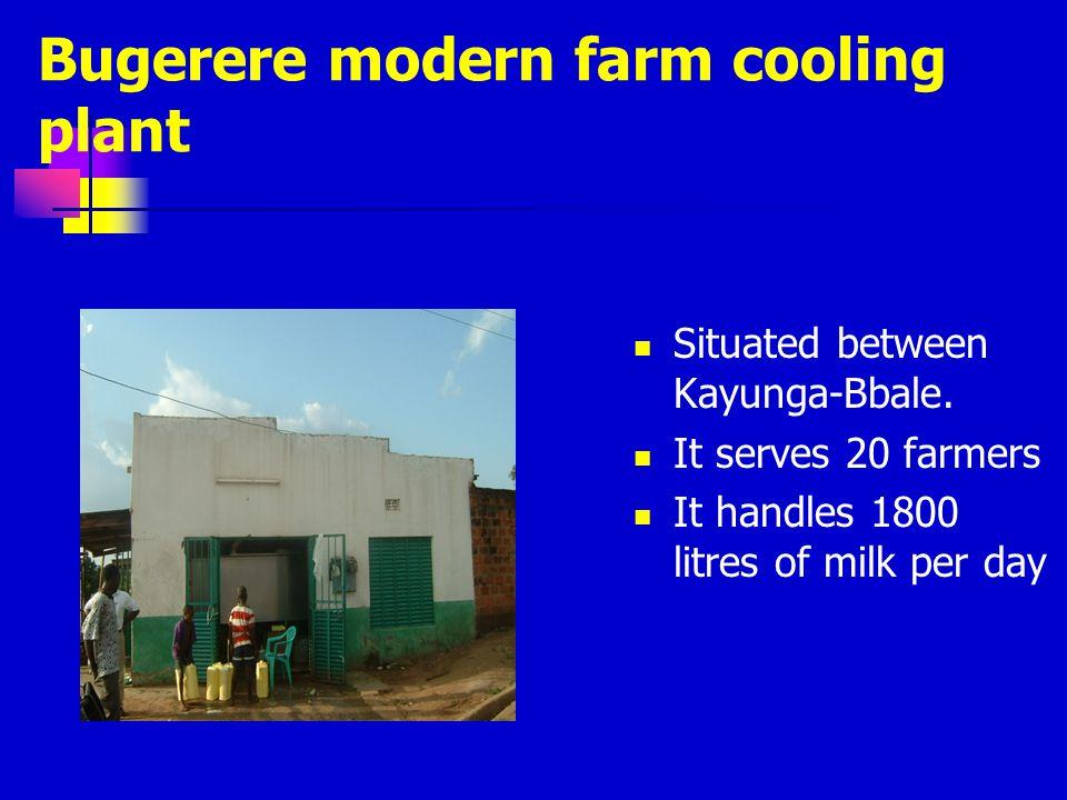 Bugerere modern farm cooling plant