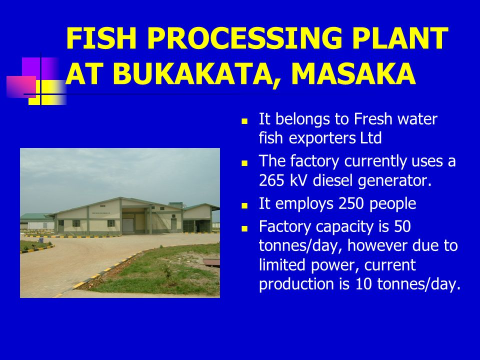 FISH PROCESSING PLANT AT BUKAKATA, MASAKA