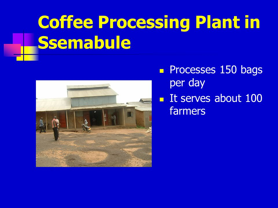 Coffee Processing Plant in Ssemabule