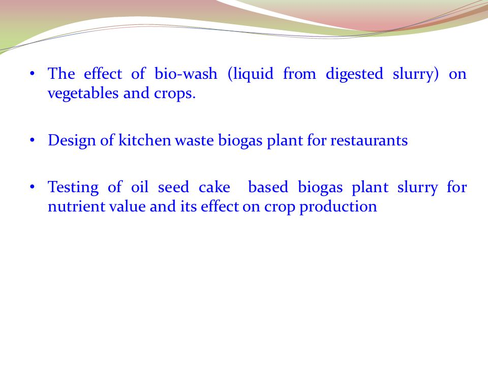 The effect of bio-wash (liquid from digested slurry) on vegetables and crops.