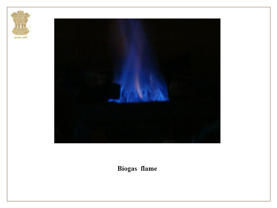 Biogas flame