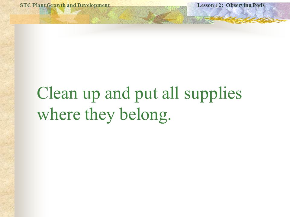 Clean up and put all supplies where they belong.