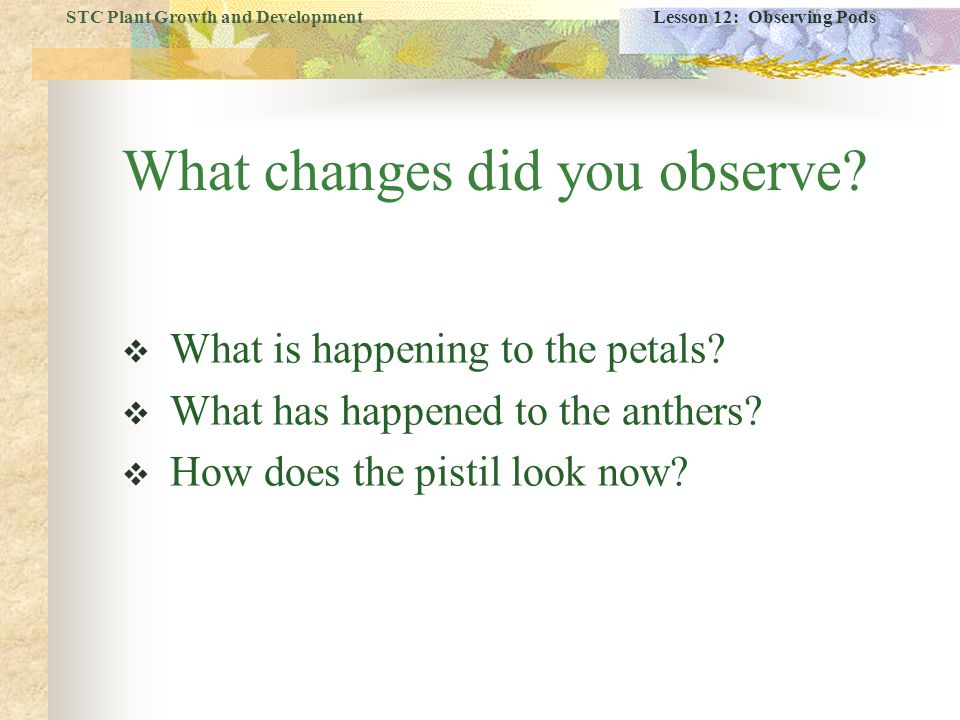 What changes did you observe