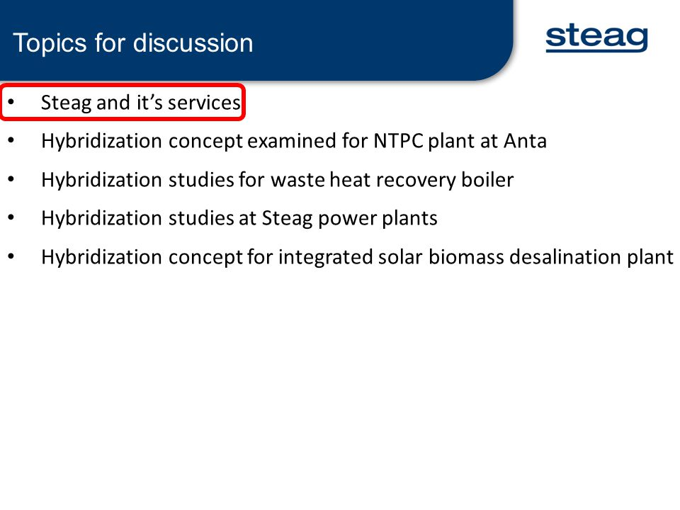 Topics for discussion Steag and it's services