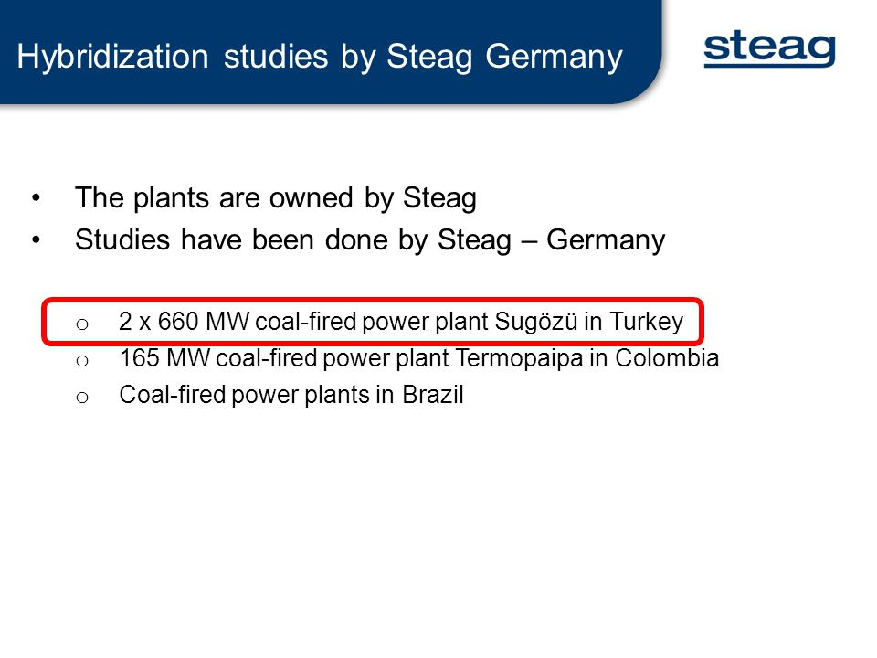 Hybridization studies by Steag Germany