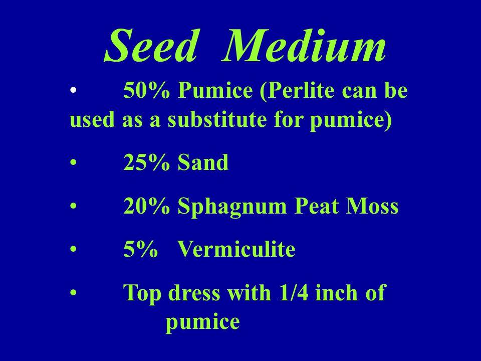 Seed Medium