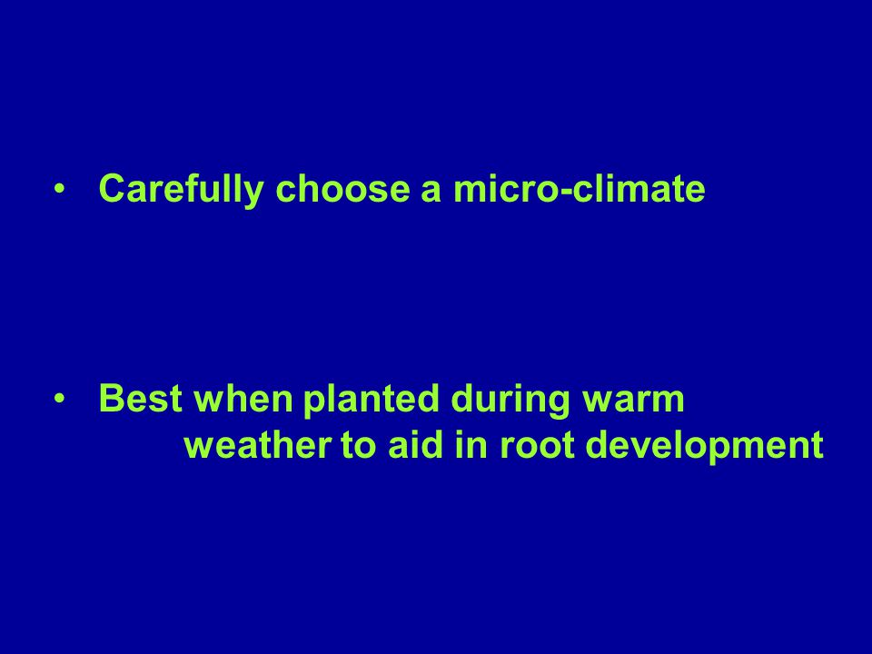Carefully choose a micro-climate