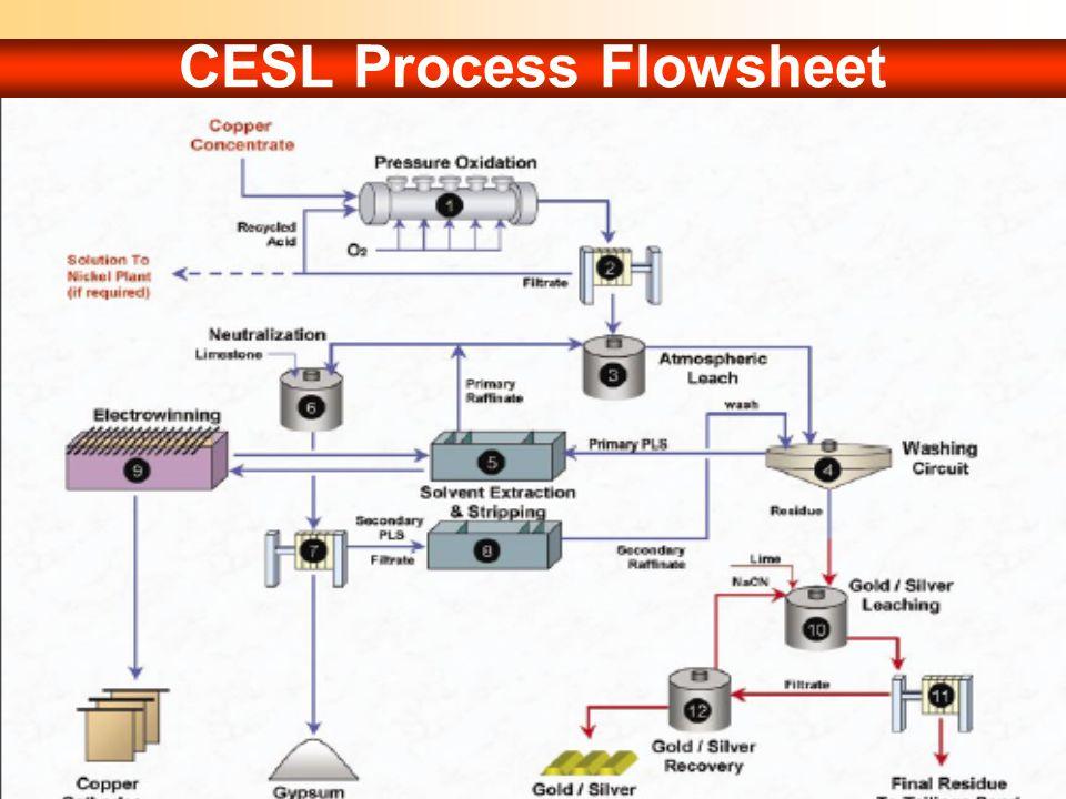 CESL Process Flowsheet
