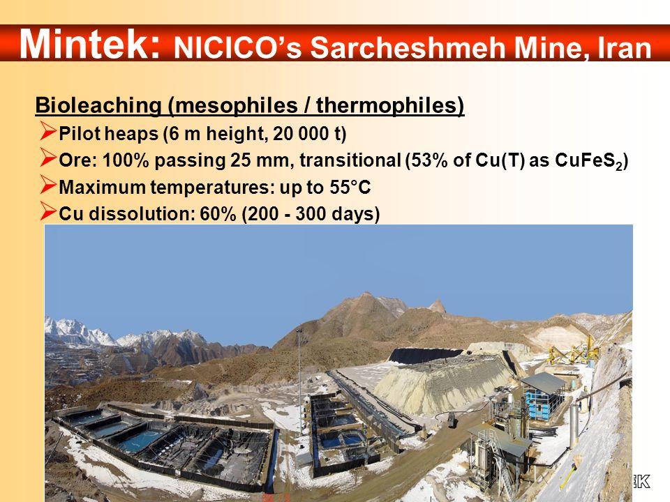 Mintek: NICICO's Sarcheshmeh Mine, Iran