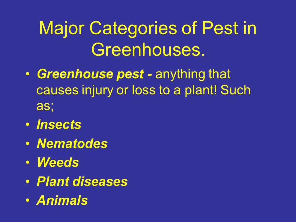 Major Categories of Pest in Greenhouses.
