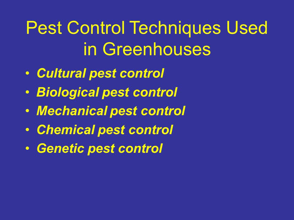 Pest Control Techniques Used in Greenhouses
