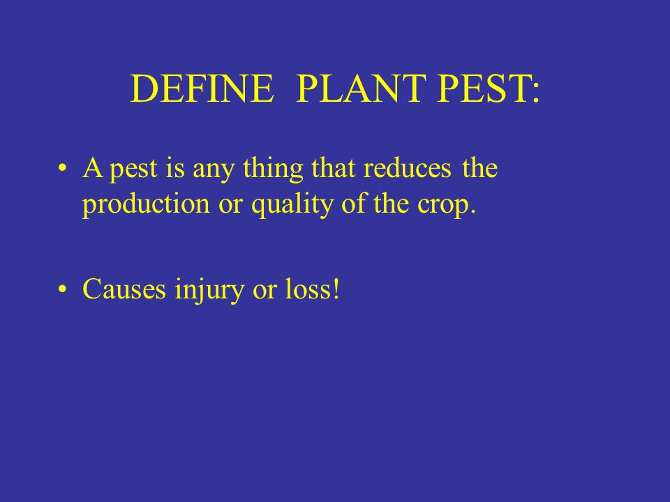 DEFINE PLANT PEST: A pest is any thing that reduces the production or quality of the crop.
