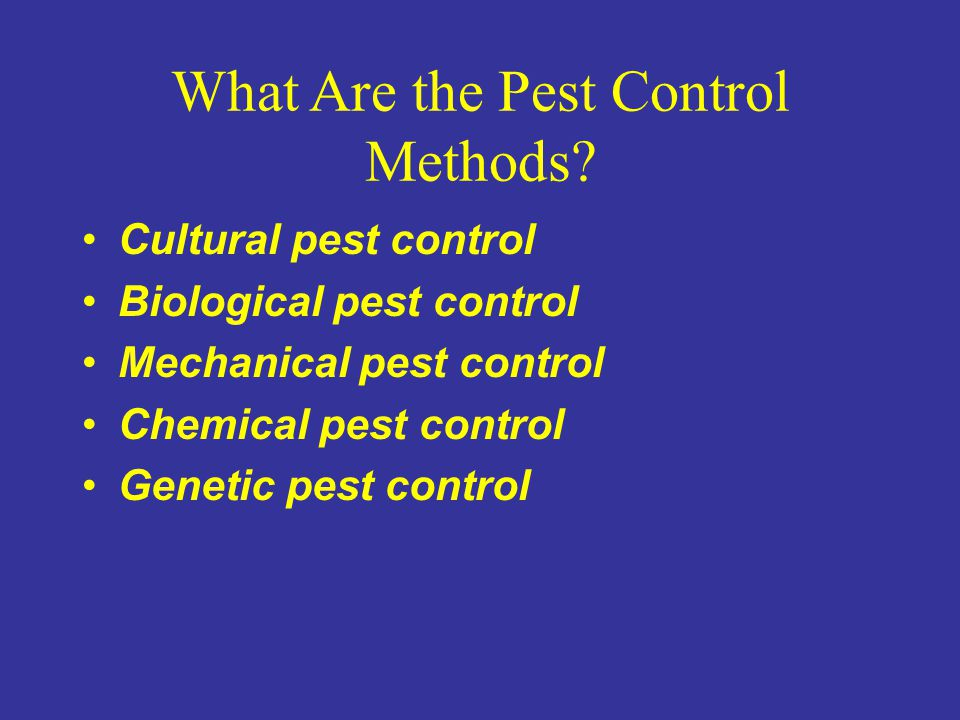 What Are the Pest Control Methods