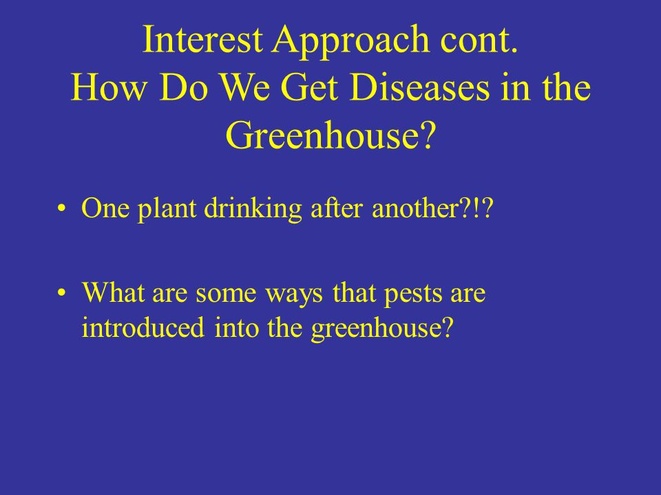 Interest Approach cont. How Do We Get Diseases in the Greenhouse