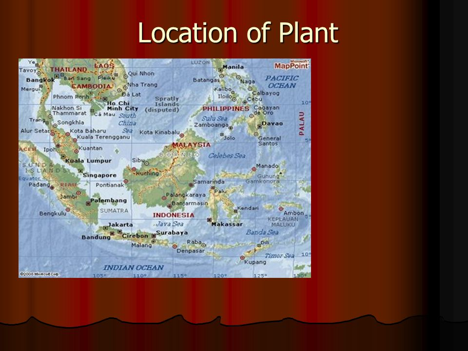 Location of Plant