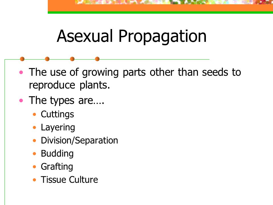 Asexual Propagation The use of growing parts other than seeds to reproduce plants. The types are….