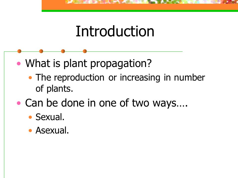 Introduction What is plant propagation