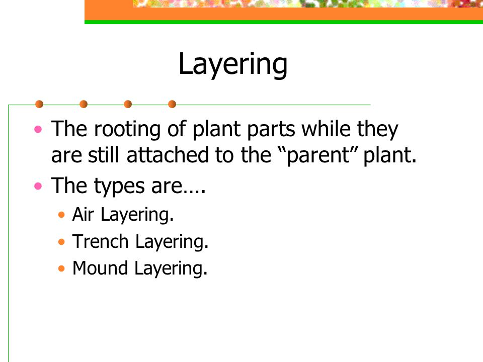 Layering The rooting of plant parts while they are still attached to the parent plant. The types are….