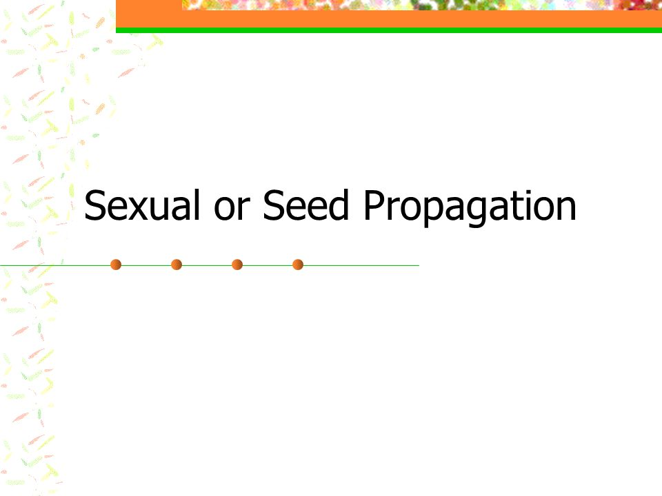 Sexual or Seed Propagation