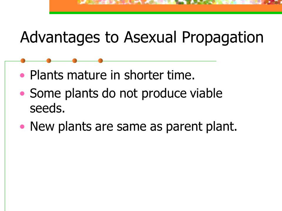 Advantages to Asexual Propagation