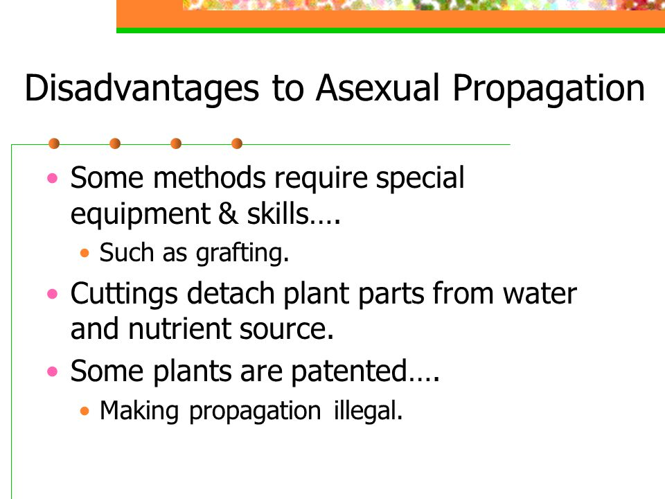 Disadvantages to Asexual Propagation