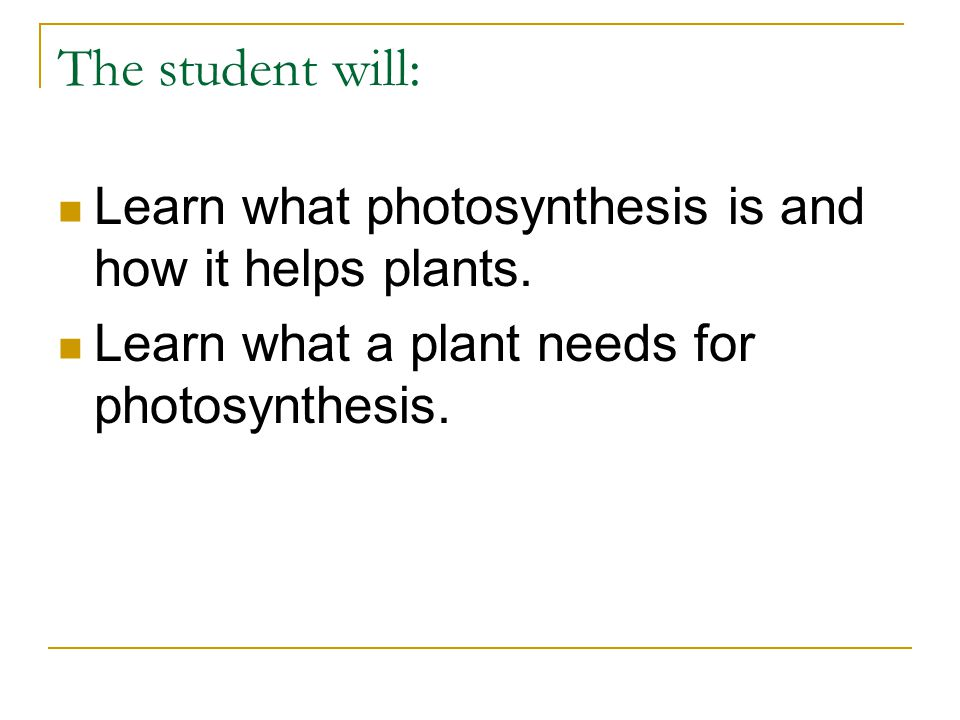 The student will: Learn what photosynthesis is and how it helps plants.