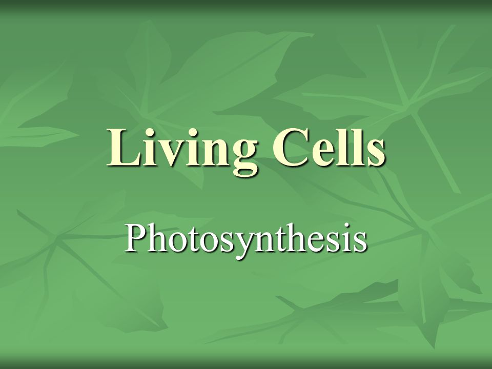 Living Cells Photosynthesis