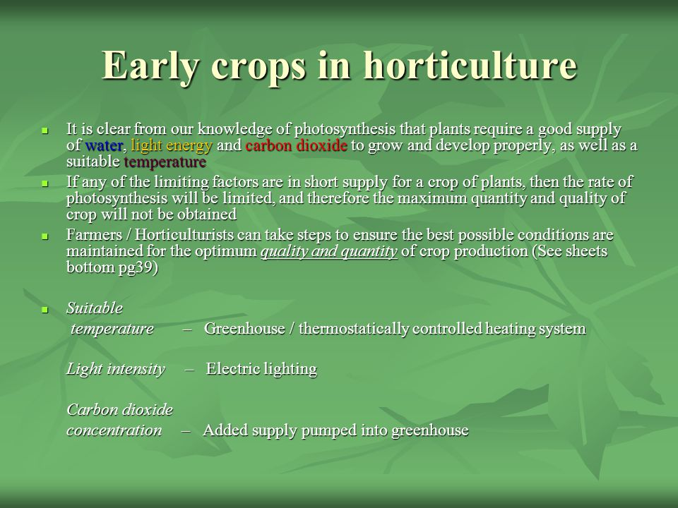 Early crops in horticulture