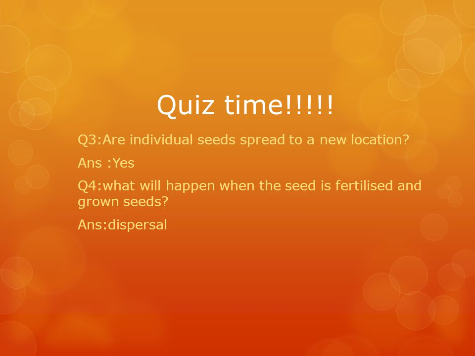 Quiz time!!!!! Q3:Are individual seeds spread to a new location