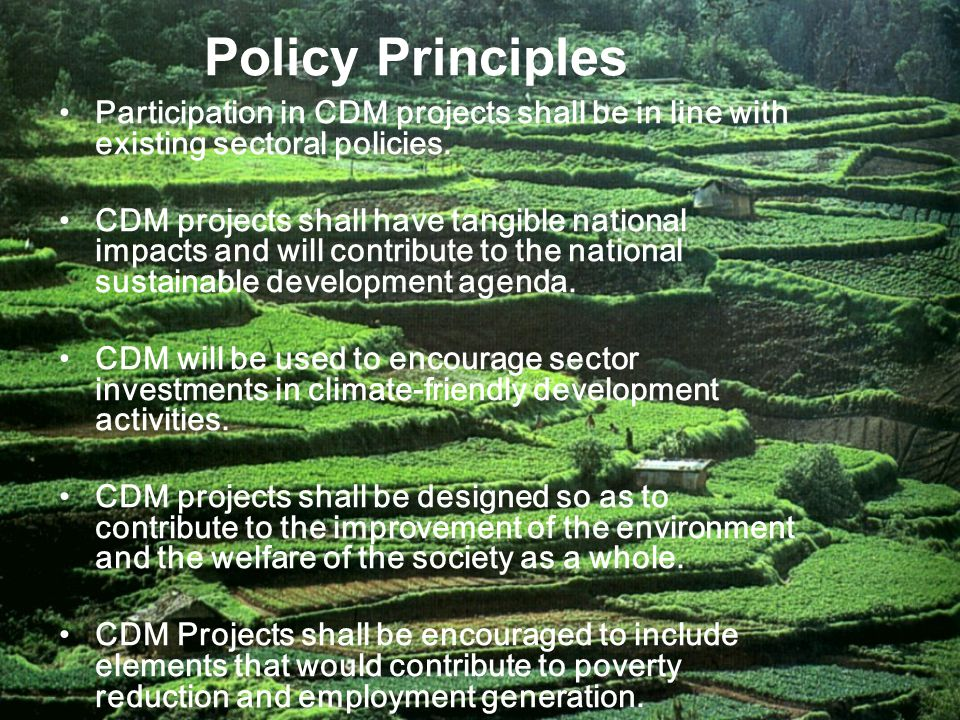 Policy Principles Participation in CDM projects shall be in line with existing sectoral policies.