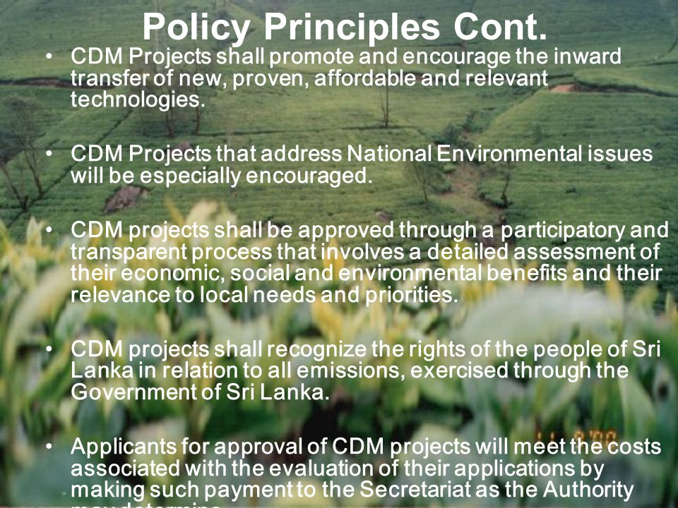 Policy Principles Cont.