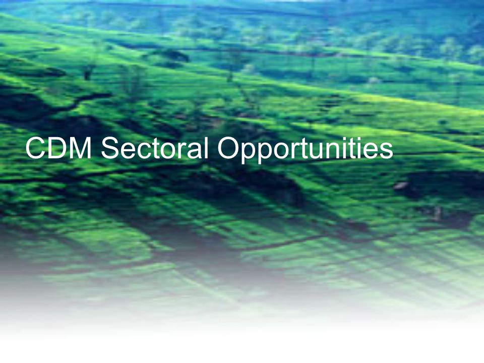 CDM Sectoral Opportunities