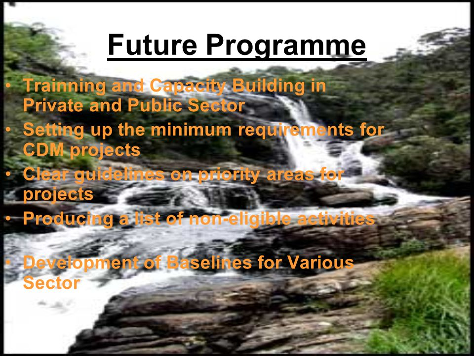 Future Programme Trainning and Capacity Building in Private and Public Sector. Setting up the minimum requirements for CDM projects.