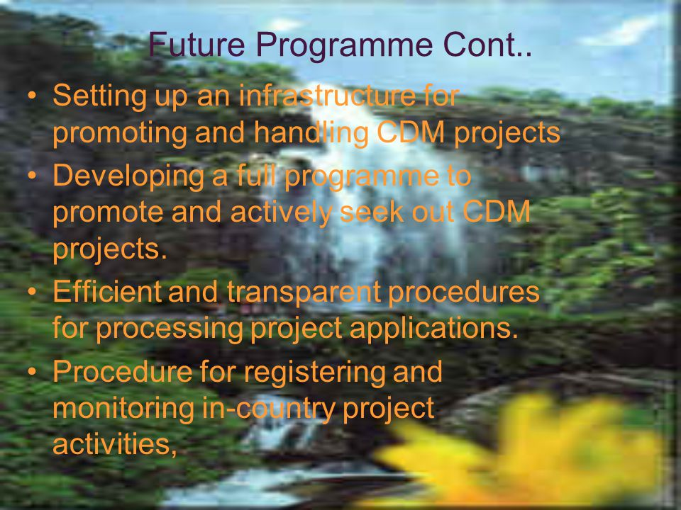 Future Programme Cont.. Setting up an infrastructure for promoting and handling CDM projects.
