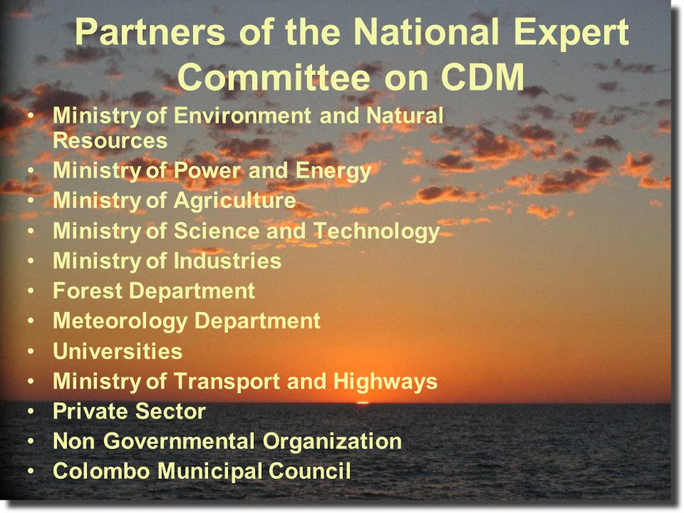 Partners of the National Expert Committee on CDM