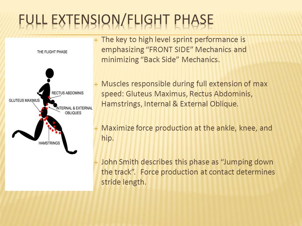 Full Extension/Flight Phase